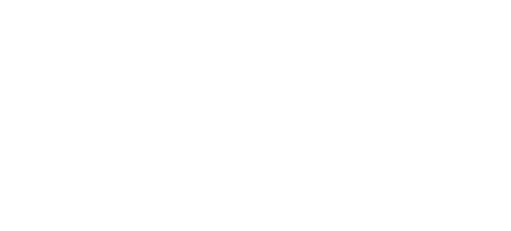 VFC Lightning